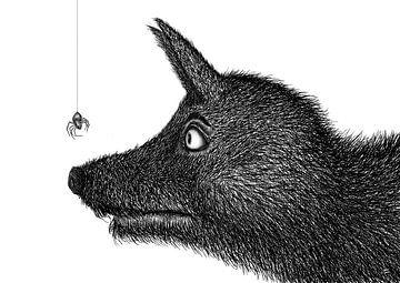 Zähe Spinne, zäher Wolf von DuFrank Images