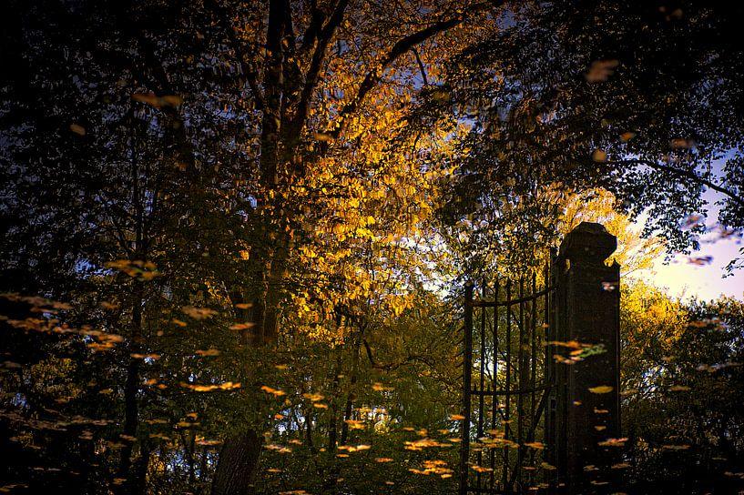 herfst reflecties van Huibert van der Meer