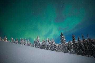 Paysage des aurores boréales en Finlande sur Hans Kluppel