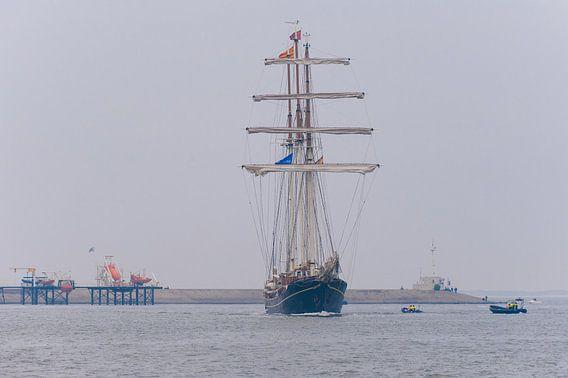 Zeilschip Stad Amsterdam van Brian Morgan