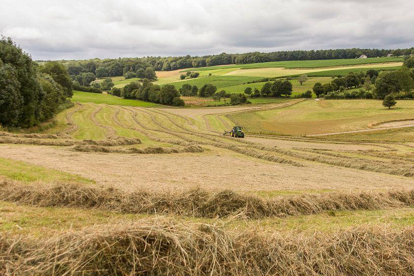 Boeren bezig met het drogen van hooi van John Kreukniet