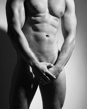 Sehr schöner nackter Mann mit muskulösem Körper. Bild in Schwarzweiß monochrom #E9988 von william langeveld