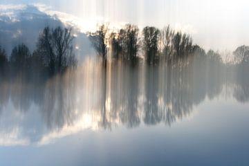 Natuur in beweging I van Marcel Borgstijn