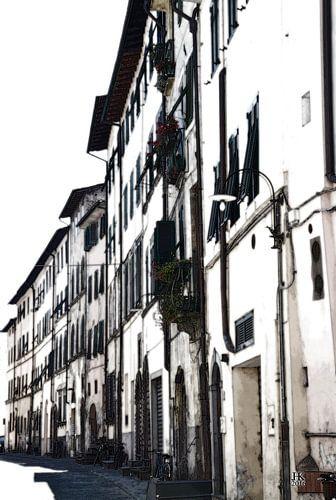 Lucca Italië Huisgevels in de zomer