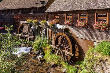 Hexenlochmühle im Schwarzwald von Werner Dieterich