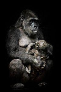 Gorilla-Affenmutter (oder ihre Schwester) stillt ihr kleines Baby, süße Szene. isolierter schwarzer