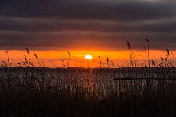 Zonsondergang boven het Gooimeer sur Inge Jansen