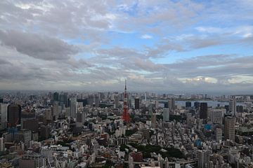 Tokyo Tower - The Skyline van Wessel Smit