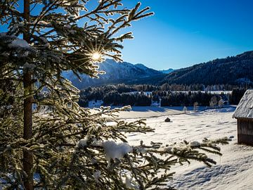 Die ersten Sonnenstrahlen am Geroldsee von Margriet Photography