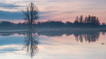 Pastellspiegel von Pieter Helsen