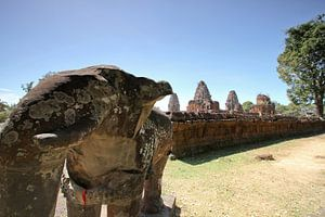 Elephanten bewachen die Tempel