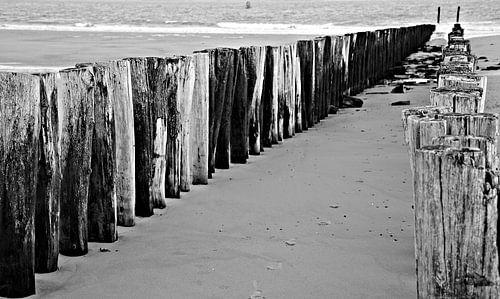 Strandpalen zwart-wit  van