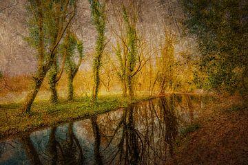 Abstracte veelvoudige blootstelling schoonheid van aard weerspiegeling van bomen in water in herfst van Dieter Walther