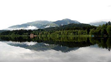 Mehr in Österreich von Greta Lipman