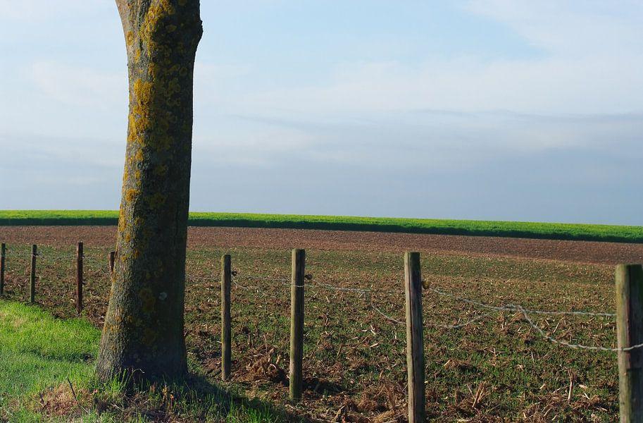 Autumn in Limburg