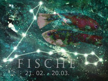 Teken van de dierenriem - Vissen van Christine Nöhmeier