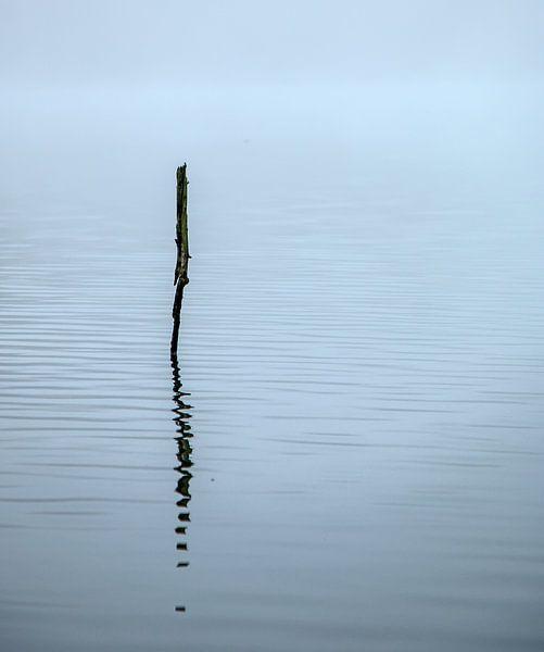Eenvoud van Pieter Navis