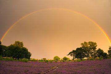 Regenboog poort von Lisa Jansen