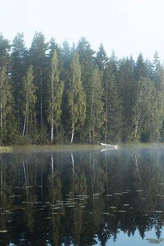Een typisch Zweeds meer van maarten starink