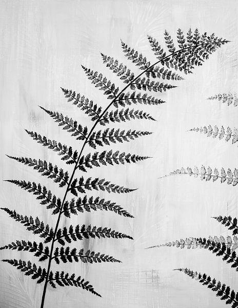 Gemälde schwarz-weißes Farnblatt von Bianca ter Riet