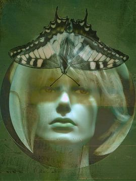 Madama Butterfly - Gesicht mit Schmetterling von Christine Nöhmeier
