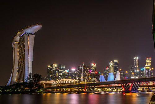 Singapore Dragonfly Bridge van Lorenzo Nijholt