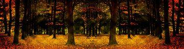 autumn sur Yvonne Blokland