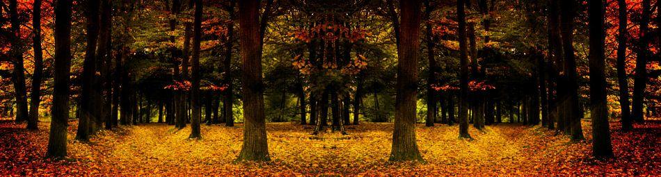 herfst van Yvonne Blokland