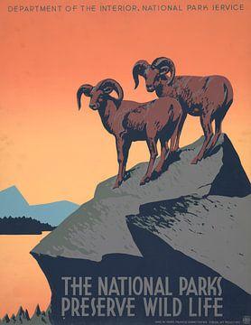 Die Nationalparks schützen die Tierwelt von Vintage Afbeeldingen