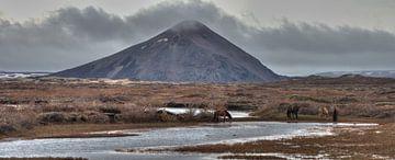 Where The Wild Horses Go van BL Photography