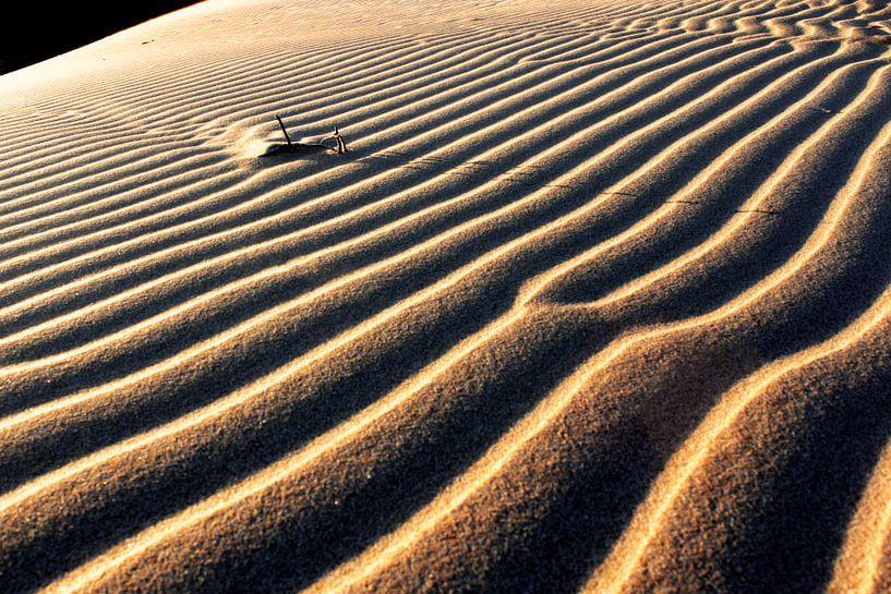 Lijnenspel in het zand van Heleen van de Ven