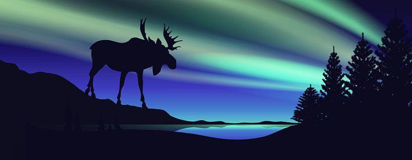 Stehen im Nordlicht von Harry Hadders