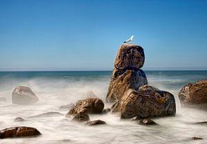 Rots in zee landschap