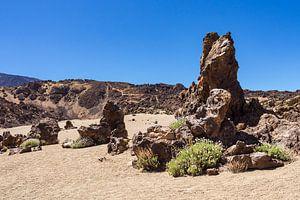 Landscape on the canary island Tenerife