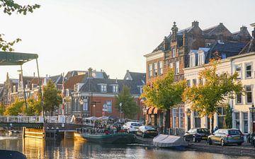 Oude Singel in Leiden van Dirk van Egmond