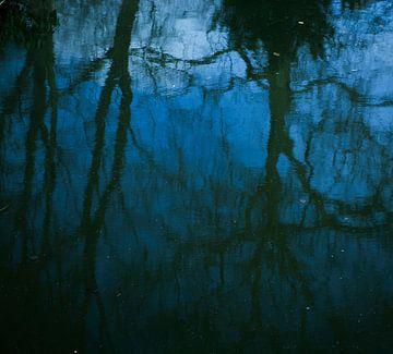 Weerspiegeling van bomen en blauwe lucht in water von Godelieve Luijk