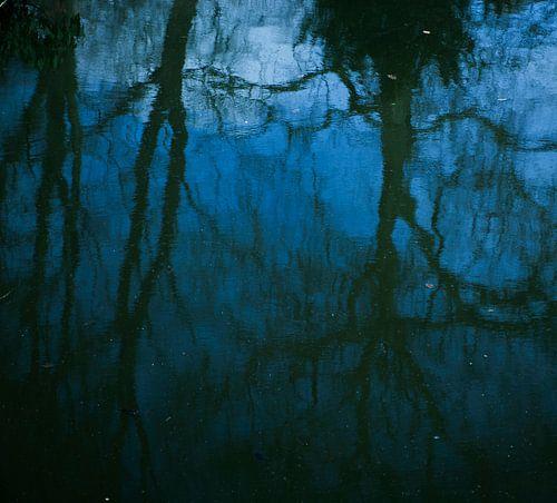 Weerspiegeling van bomen en blauwe lucht in water van