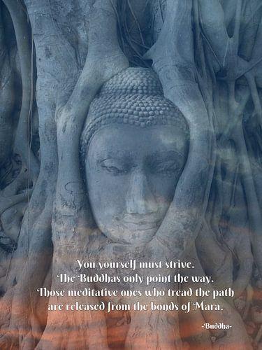 Thai Buddha tree van Misja Vermeulen
