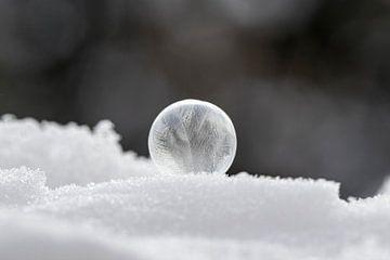 Bevroren zeepbel in de sneeuw van Tanja van Beuningen