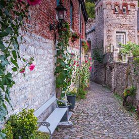 Romantisch steegje in Durbuy, België van Evert Jan Luchies