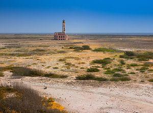 Het verlaten landschap