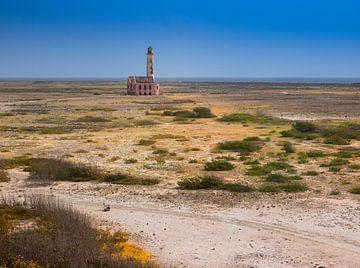 Het verlaten landschap van Barry Jansen