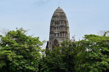 Tempel in Thailand  van