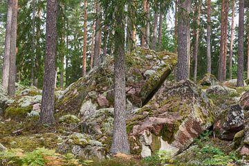 Schweden 276 von Geertjan Plooijer