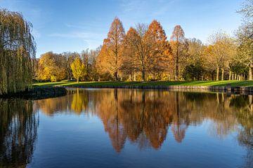 Herfst in het park van kasteel Hülshoff van Peter Schickert
