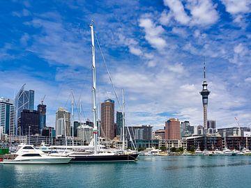 Skyline van Auckland Nieuw-Zeeland van Rik Pijnenburg