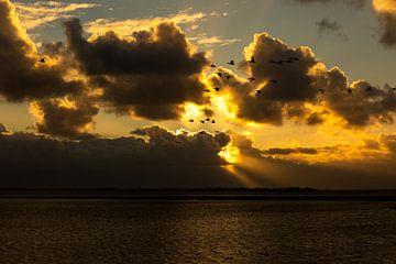 Zonsondergang boven het Grevelingenmeer van Jan Tuns