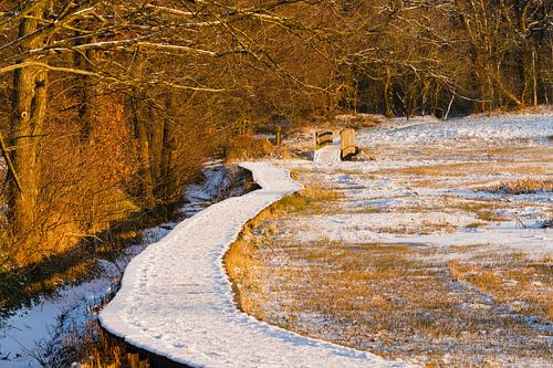 Snowy plank bridge in golden hour sur