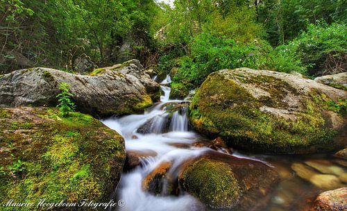The waterfall van