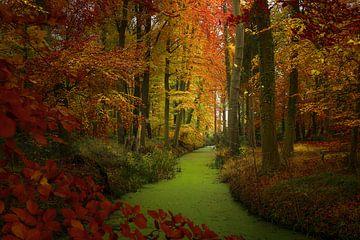 Herbst von Willem  Bentink